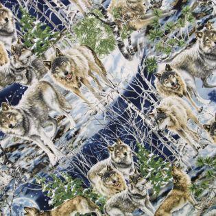 Baumwolle - Timeless Treasures - Dona Wolf