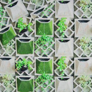 Dekostoff - Half Panama - Gartengewächs